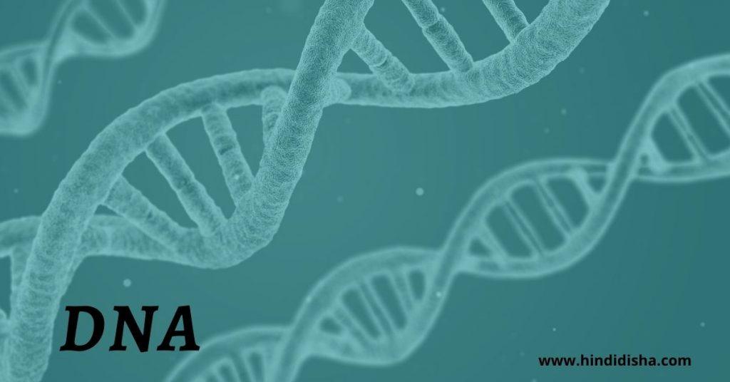 DNA का फुल फॉर्म क्या है?